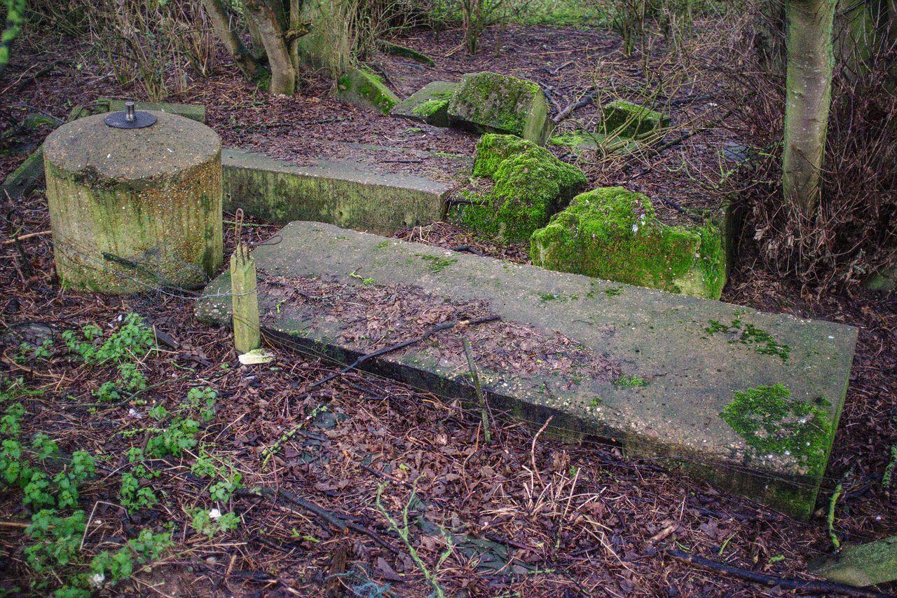 Remains of a World War II spigot mortar